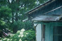 Part of an old house in the village. Around the trees. It is pouring rain. royalty free stock photo