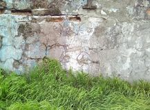 Part of the old light plastered wall and green grass. Part of the old light plastered wall and green grass in daylight royalty free stock images