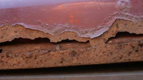 Part of an old rusted piece of metal, possibly a car hood with rust, holes and peeling paint. Close-up stock video