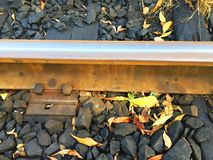 Part of the old track, autumn leaves royalty free stock photography