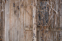 Part of an old wooden wall Stock Photo