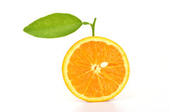 part orange image stock