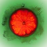 Part orange avec le fond grunge Photographie stock