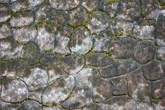Part of patterned concrete pavement Royalty Free Stock Photos