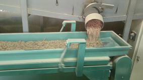 Part of pellets manufacturing process stock footage