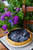 Cake with blueberry Royalty Free Stock Image