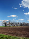 Part of the plowed field in the spring. Blue sky Stock Photos