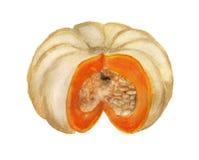 Part of pumpkin Royalty Free Stock Photos