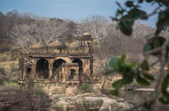 Part of ranthambhore fort Royalty Free Stock Photo