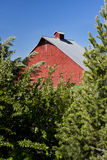Part of red barn and trees. Stock Images