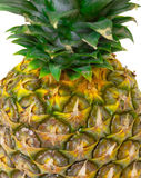 Part Ripe Pineapple Fruit Royalty Free Stock Image