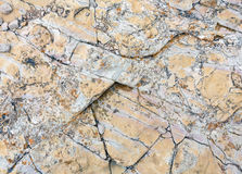 Part of rock close up. Stock Images