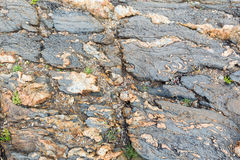 Part of rock close up. Stock Photography
