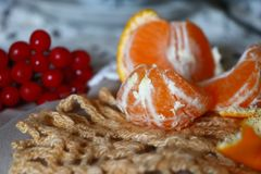 sunny tangerine royalty free stock images