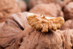Part of shelled walnuts Royalty Free Stock Image