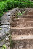 Part of a small stone stairs at a green garden in summer. Madeira, Portugal stock photos