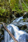 Part of Snow Creek Falls. Royalty Free Stock Photo