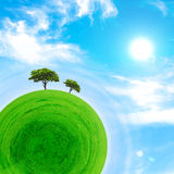 Part of a spherical panorama of a green meadow with trees Stock Photos