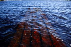 Part of the sunken pier under water. Part of the sunken pier under the clear water of a large lake Stock Images