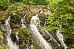 Part of the Swallow Falls, waterfalls in North Wales Royalty Free Stock Photography