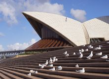 Part of Sydney Opera House Royalty Free Stock Images