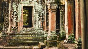 Ta Prohm temple in Angkor. Part of the temple of Ta Prohm temple in the site of Angkor Stock Photos