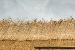 Part of Thatched Roof with Straw Royalty Free Stock Photo