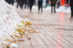 Part of winter frost sidewalk. Pile  collected snow and autumn leaves. City street Royalty Free Stock Photos