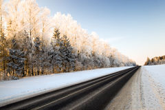 Part of winter road Stock Image