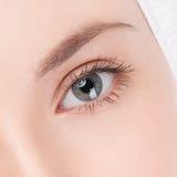 Part of woman face: closeup eye Stock Photo