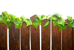 Part of  wooden fence Stock Images