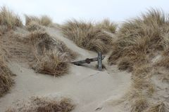 Part of wooden fence in the dunes stock photography