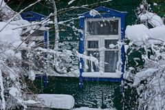 Part of a wooden house with a window and branches of bushes in white snow. The old windows on the green wall of the house and the branches of plants in the snow Stock Photos