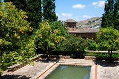 Partal Gardens, Alhambra Palace. Pool in the Palacio del Partal  (Gardens of the partal), Palace of Alhambra, Granada, Granada Province, Andalusia, Spain Royalty Free Stock Photo
