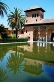Partal gardens, Alhambra Palace. View of the Partal gardens featuring a pool and palm tree, Palace of Alhambra, Granada, Granada Province, Andalusia, Spain Royalty Free Stock Photo