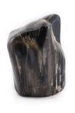 Parte anteriore antica di legno petrificata del nero del pezzo Fotografia Stock Libera da Diritti
