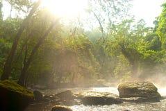 Parte anteriore della foresta della cascata in Tailandia Fotografie Stock