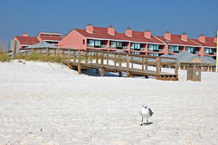 Parte anteriore della spiaggia Fotografie Stock