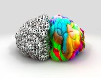 Parte anteriore destra e sinistra di concetto del cervello illustrazione di stock