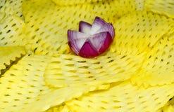 A parte & a batata à moda da cebola remendam a fotografia do fundo Imagem de Stock