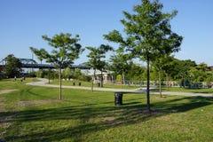 Parte concreta 3 29 del parque de la planta Imagen de archivo libre de regalías