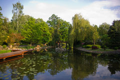 Parte da lagoa no jardim japonês Fotografia de Stock