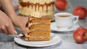 Parte de bolo de Apple com especiarias, canela do caramelo, caramelo cremoso no estilo do outono filme