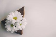 Parte de bolo de chocolate com as flores no fundo branco Instag Fotografia de Stock