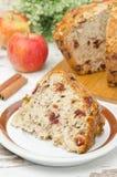 Parte de bolo de maçã caseiro com canela e as airelas secadas Imagem de Stock Royalty Free