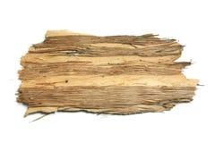 Parte de casca de árvore Imagens de Stock