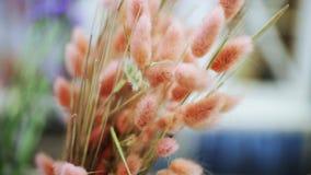 Parte de cierre de la composición de la flor para arriba almacen de video