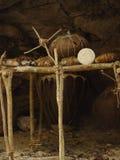Parte de la yarda maya Imagen de archivo