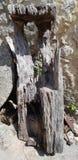 Parte de madeira podre do moinho imagens de stock royalty free