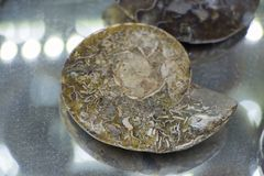Parte de pedras preciosas minerais naturais Fotografia de Stock Royalty Free